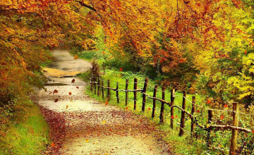 Free Desktop Wallpaper Autumn Scenery
