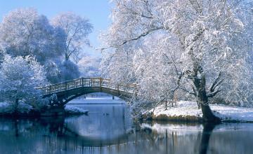 Free Desktop Wallpaper Winter Pictures