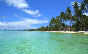 Free Exotic Beach Wallpapers