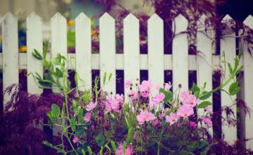 Free Flower Garden Desktop Wallpaper