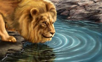 Free Lion Wallpaper Downloads