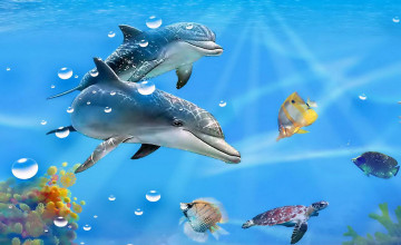 Free Live Dolphin Wallpaper