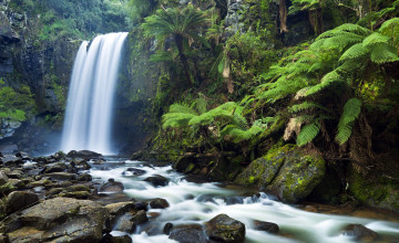 Free Live Waterfall Wallpaper Downloads