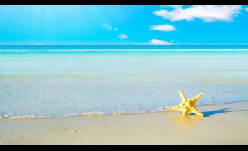 Free Summer Beach Wallpaper