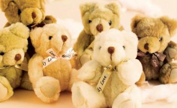 Free Teddy Bear Wallpaper