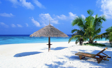 Free Tropical Wallpapers for Desktop