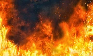 Free Wallpaper for Fire HD