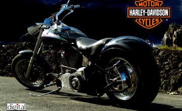 Free Wallpaper Harley Davidson Motorcycles