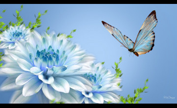 Free Wallpapers Butterflies to Download