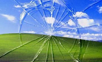 Free Wallpapers Screensavers Windows XP