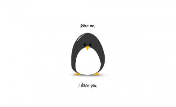 Funny Penguin Wallpaper
