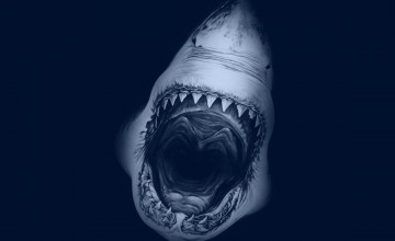 Great White Shark Desktop Wallpaper