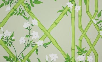 Green Lattice Wallpaper