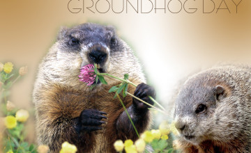Groundhog Day Wallpaper