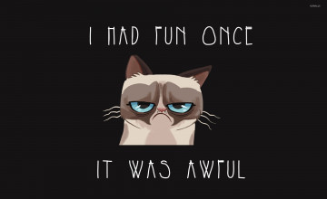 Grumpy Cat Meme Wallpaper