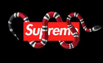 Gucci iPhone Wallpaper Supreme