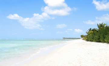 Gulf Coast Background Wallpaper