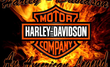 Harley Davidson Background Pictures