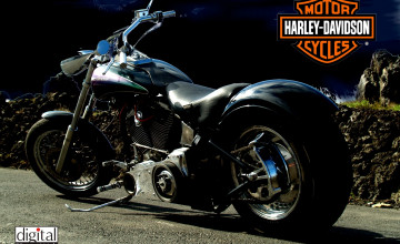 Harley Davidson Backgrounds
