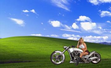 Harley Davidson Wallpaper Skills
