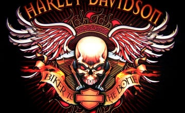46 Harley Skull Wallpaper On Wallpapersafari
