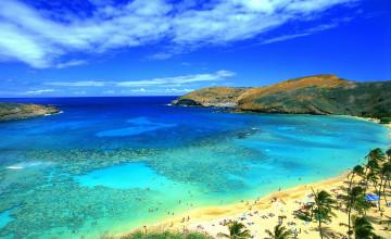 Hawaii Ocean Beach Wallpaper