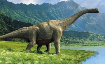 HD Dinosaur Wallpapers