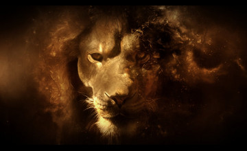 HD Lion Wallpaper