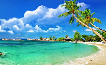 HD Tropical Desktop Wallpaper