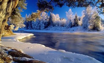 HD Winter Desktop Wallpaper