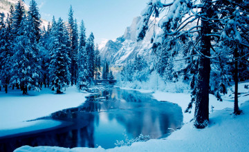 High Definition Winter Scenes Wallpaper