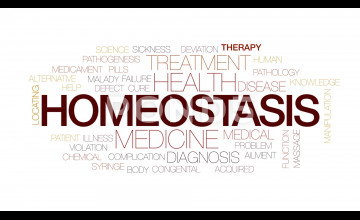 Homeostasis Wallpaper
