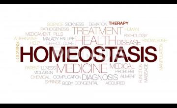 Homeostasis Wallpaper