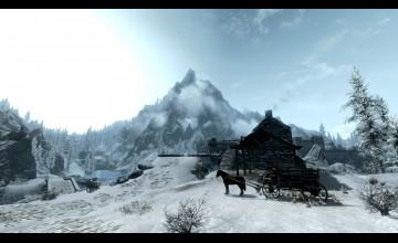 Horse Winter Scenes Wallpaper