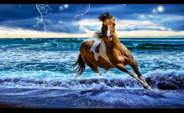 Horses on the Beach Wallpaper