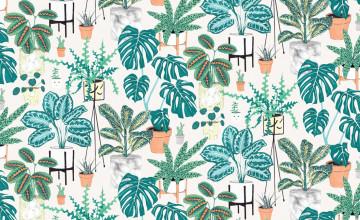 Houseplant Wallpaper