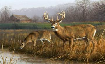 Hunting Wallpaper HD