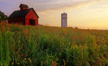 Illinois Farm Wallpaper