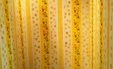 Imagery in the Yellow Wallpaper