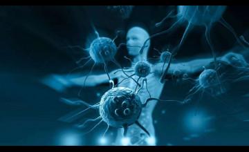 Immunology Background