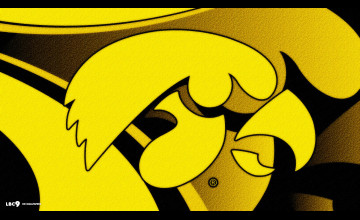Iowa Hawkeye Basketball Wallpaper