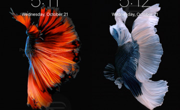 iPhone 6 Plus Live Wallpapers