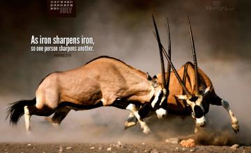 Iron Sharpens Iron Wallpaper