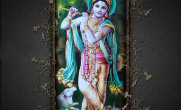 jai shri krishna wallpaper