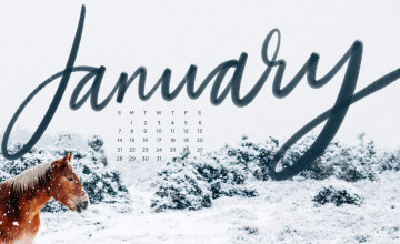 January Backgrounds