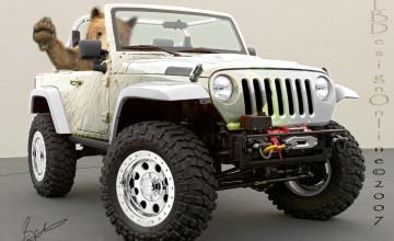 Jeep Photos Wallpaper