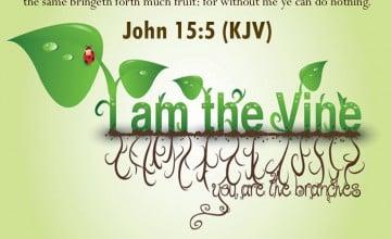King James Bible Verse Wallpaper