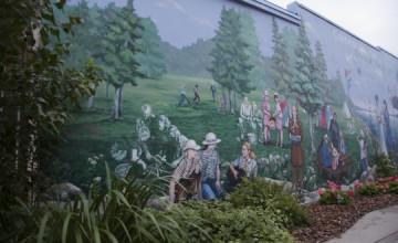 Large Wallpaper Murals Canada
