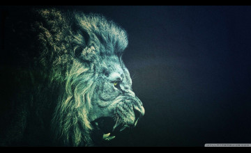 Lion Wallpaper HD 1080P