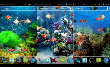 Live Aquarium Wallpaper Free Download